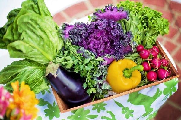 5 Nutrisi Penting yang Harus Dipenuhi Tubuh Saat Berpuasa