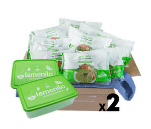 [Promo] Buy LemoniloBOX Paket Lemonilo Mie Goreng Instan Alami Isi 20 Free Lunch Box Lemonilo