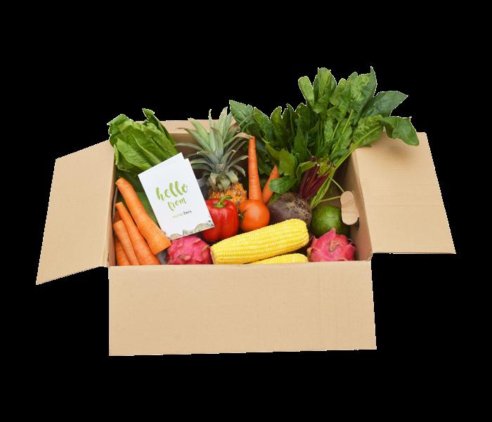 Sayurbox A Surprise Box