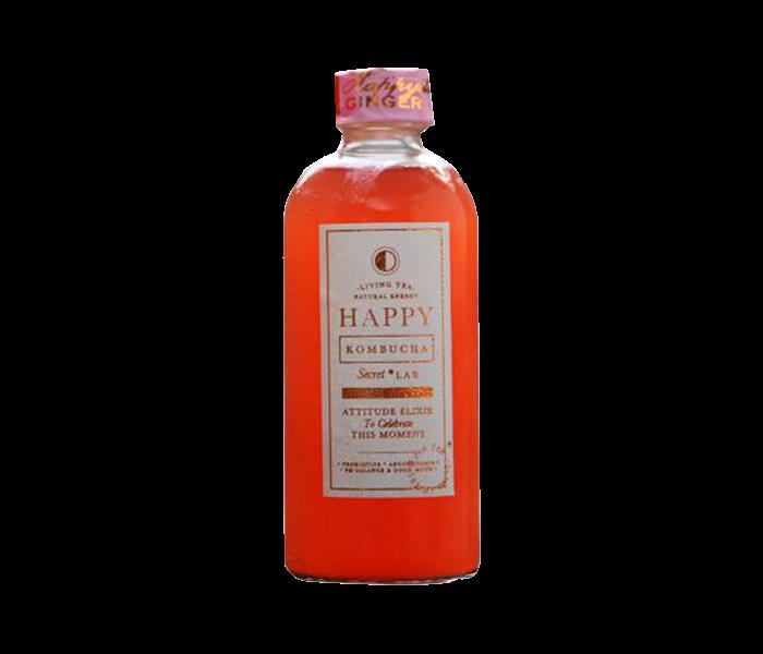 Happy Kombucha Happyella Ginger