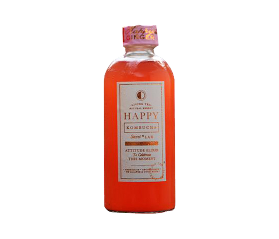 Happy Kombucha Happyella Ginger