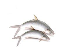 Keranjang Sayur Ikan Bandeng
