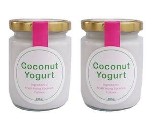 Yourgut Double Coconut Yogurt Package