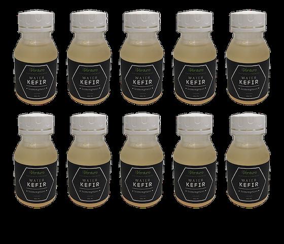 Verdure Water Kefir Lemongrass 250ml (Pack of 10)
